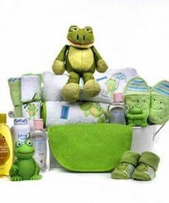 Frog Baby Gift Basket
