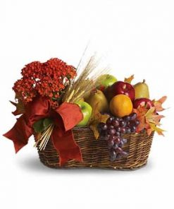 Fruit With A Plant Gift Basket