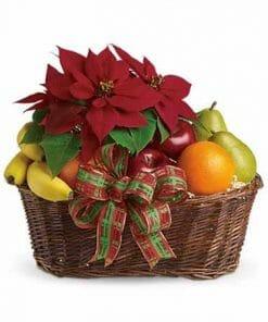 Poinsettia Fruits Gift Basket