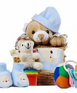 Stuffed Animal Baby Gift Basket