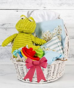 Order Now Baby Boy Frog Gift Basket