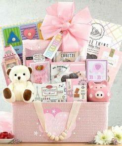 Order New Baby Girl Gift Basket